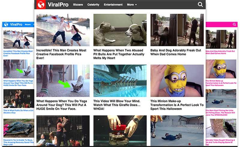 viralpro-styles