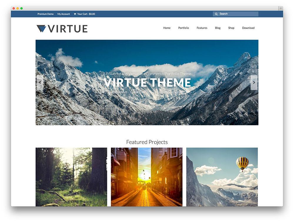 Virtue Portfolio theme