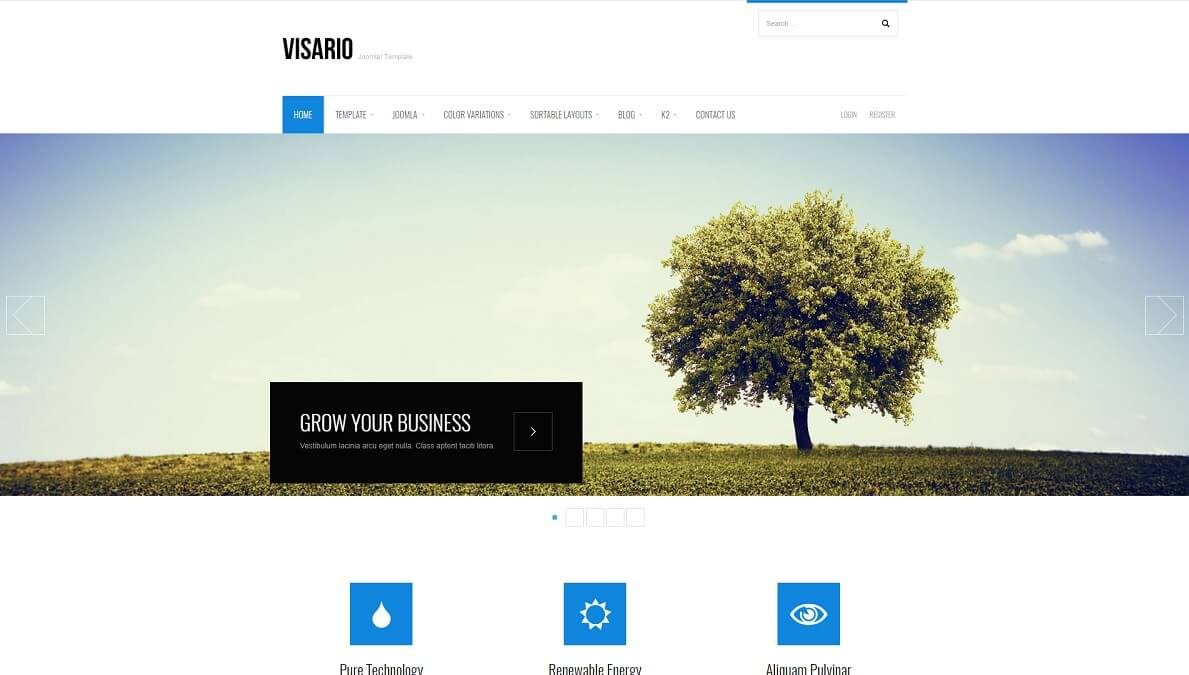 visario joomla business template