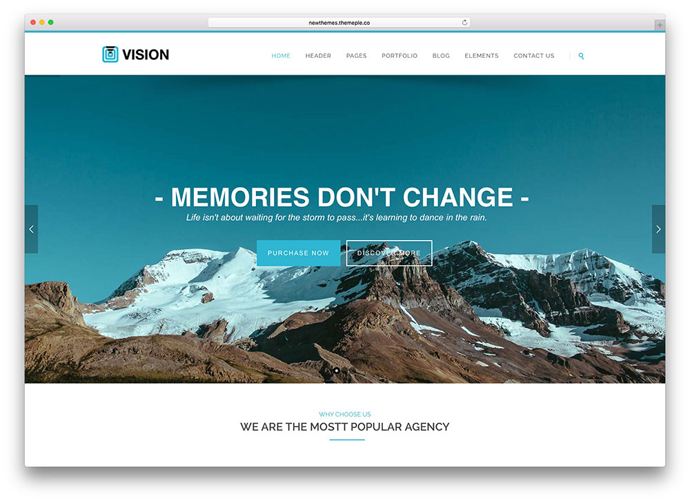 vision - blue one page wp theme