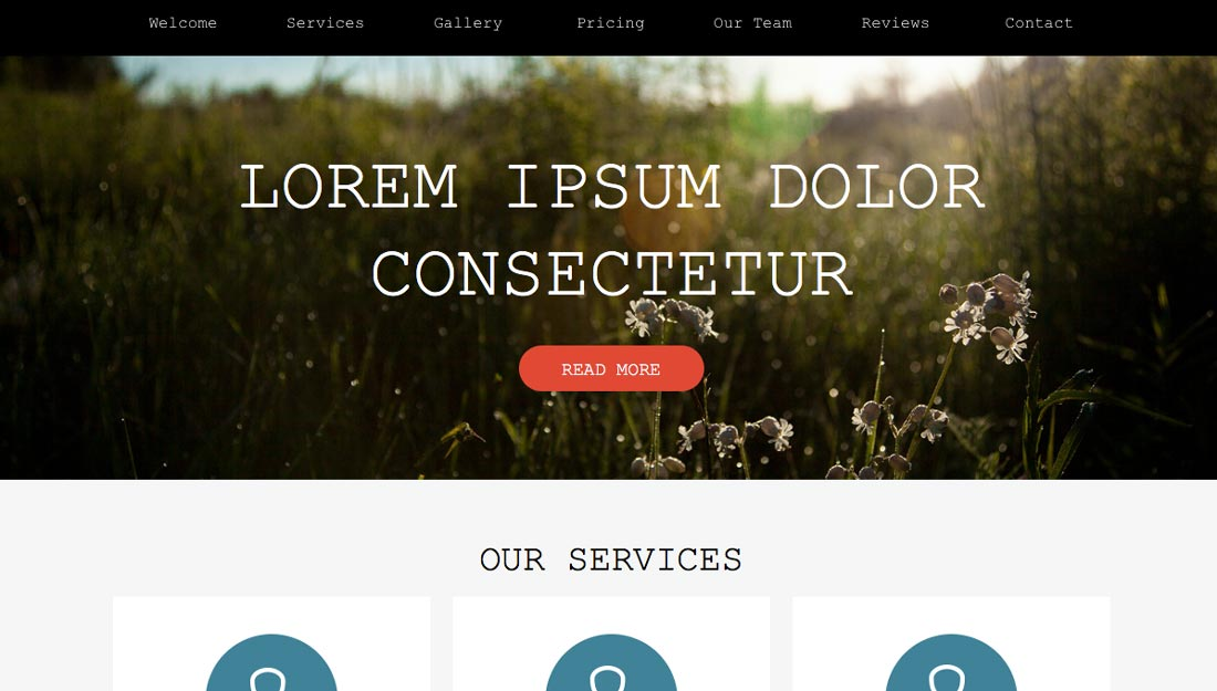 Free adobe muse template choices pick among 16 themes web muse pronofoot35fo Images