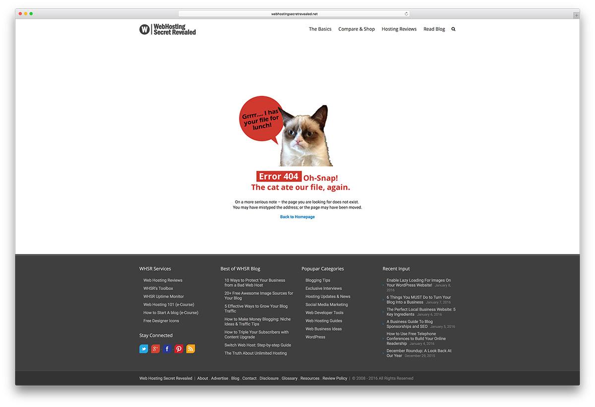 webhostingsecretrevealed-error-page-example