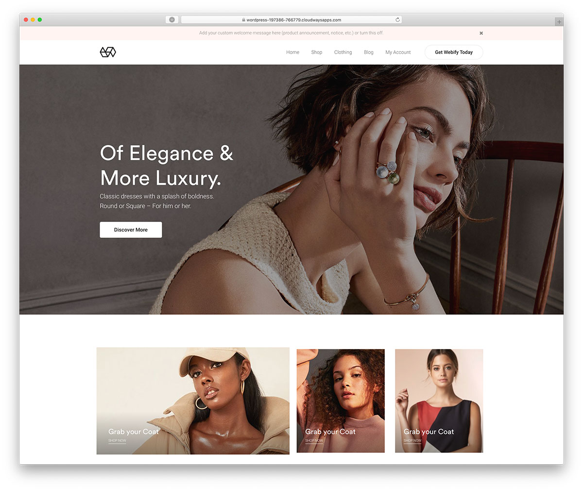 fashion ecommerce theme for WordPress
