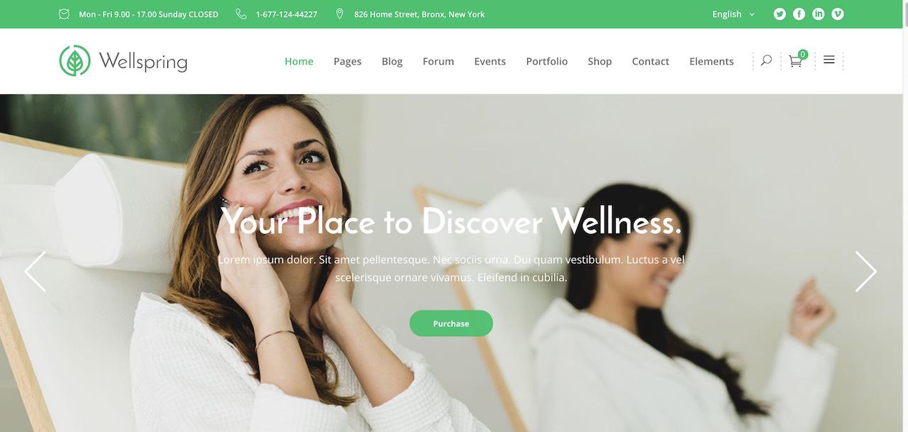 wellspring-a-health-lifestyle-wellness-theme-CL