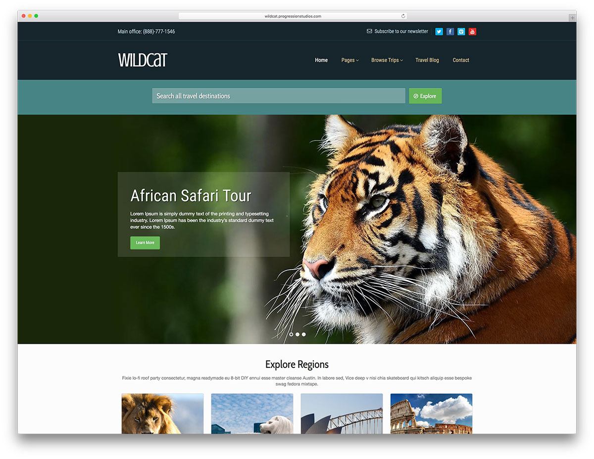 wildcat-travel-website-wordpress-website-template