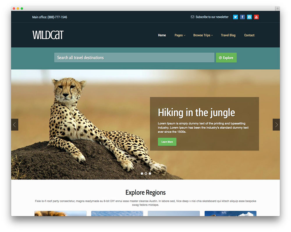 wildcat WordPress theme
