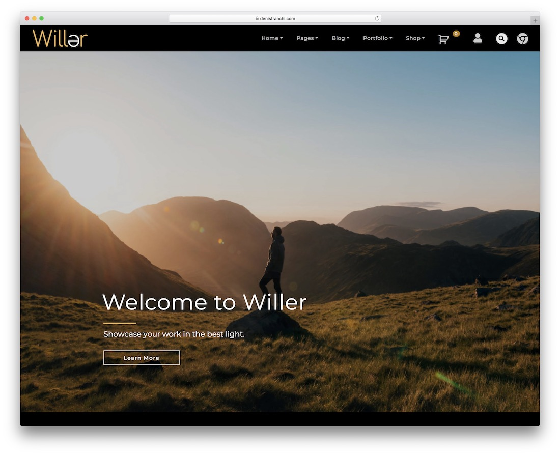 willer free gallery wordpress theme
