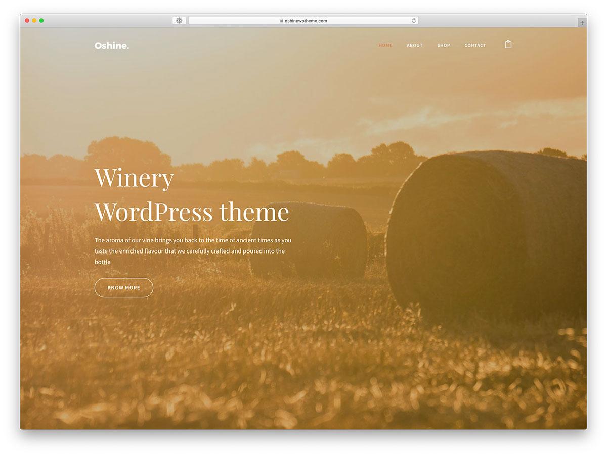 wine shop WordPress theme
