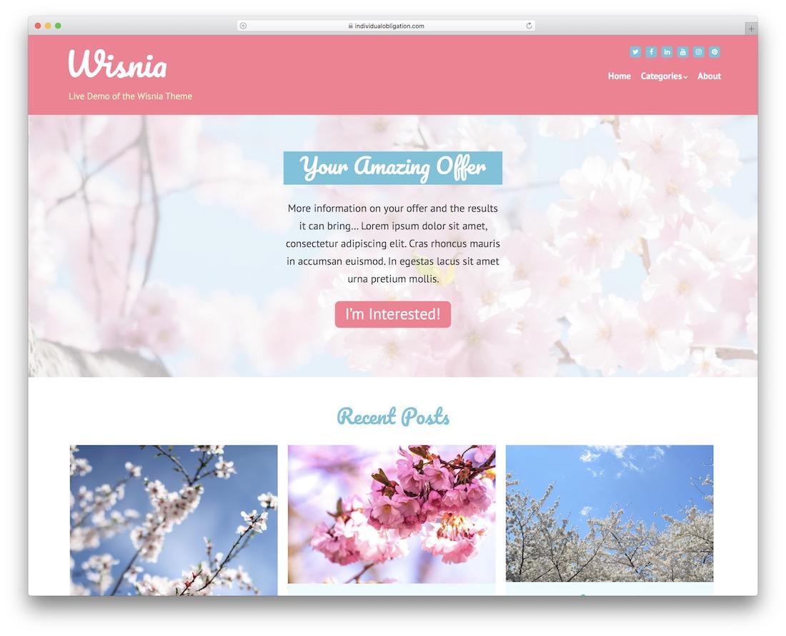 wisnia free simple wordpress theme