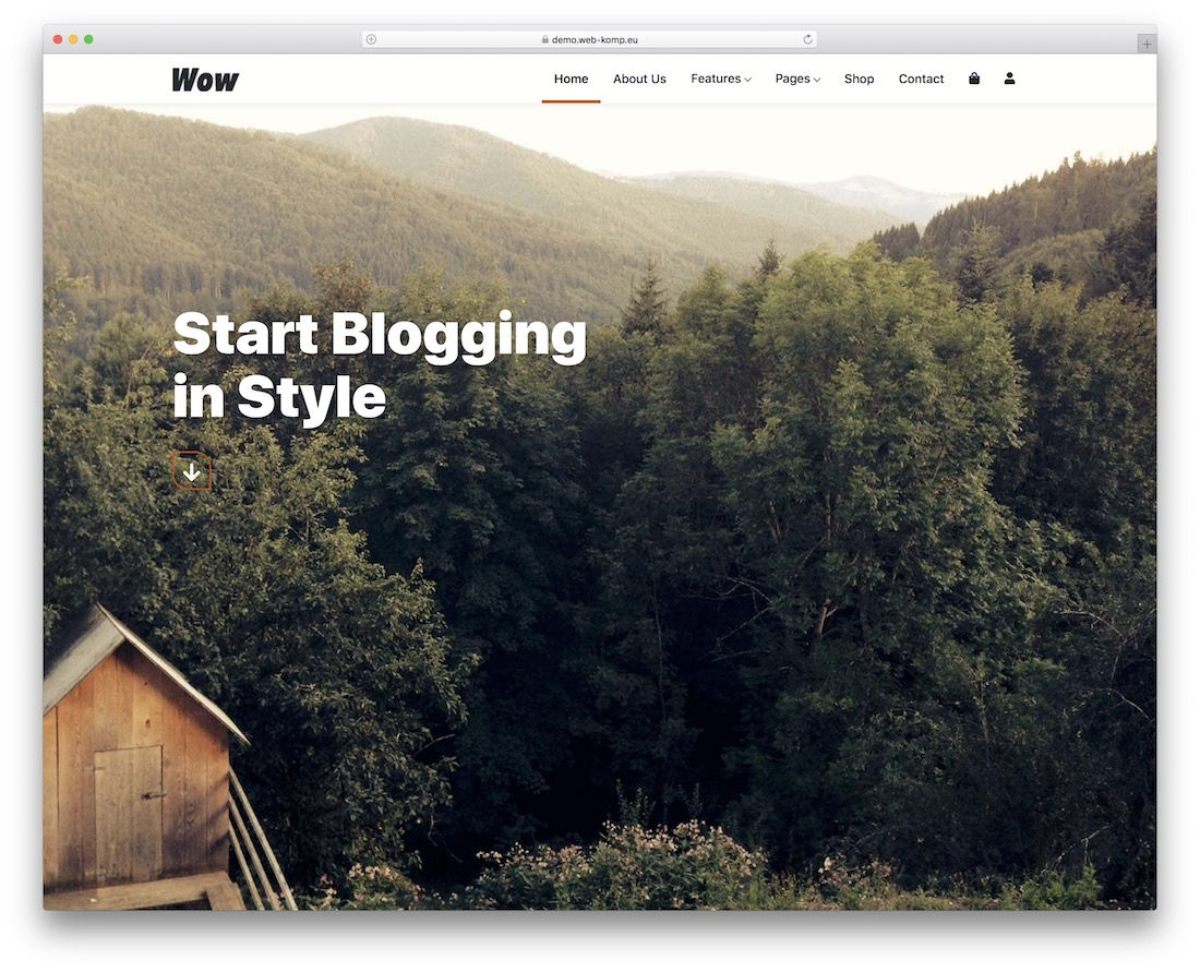 wk wow free bootstrap wordpress theme