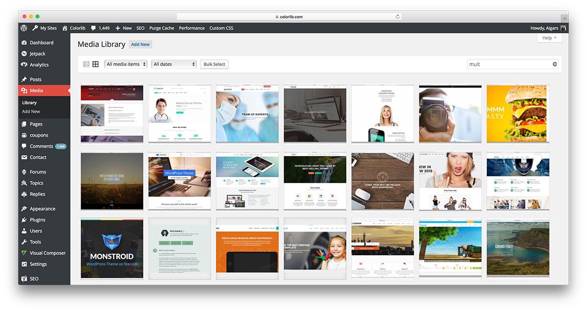 WordPress Media Library.