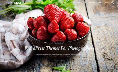 18 Wordpress Photographer Themes