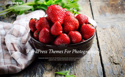 18 WordPress Photographer Themes