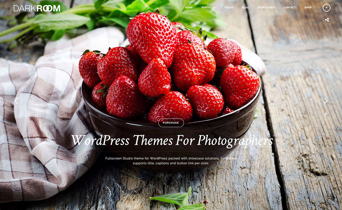 20 Best WordPress Themes For Photographers & Photography Enthusiasts To Showcase Portfolio With Style 2018