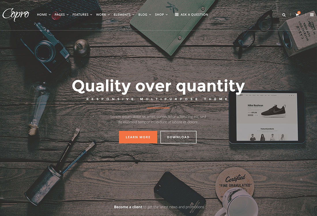21 WordPress Themes For Static Websites And Sales Pages For Companies In 2019