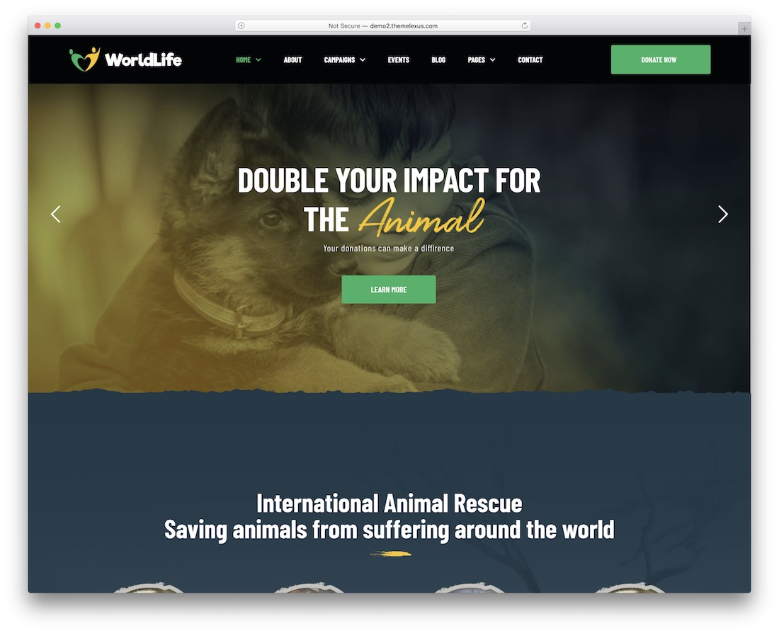 worldlife charity website template