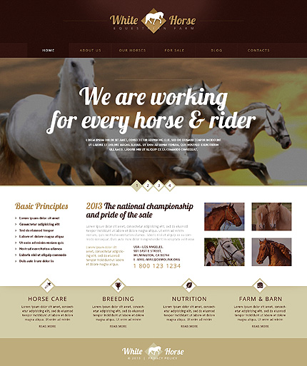 Gorgeous Horses WordPress Theme