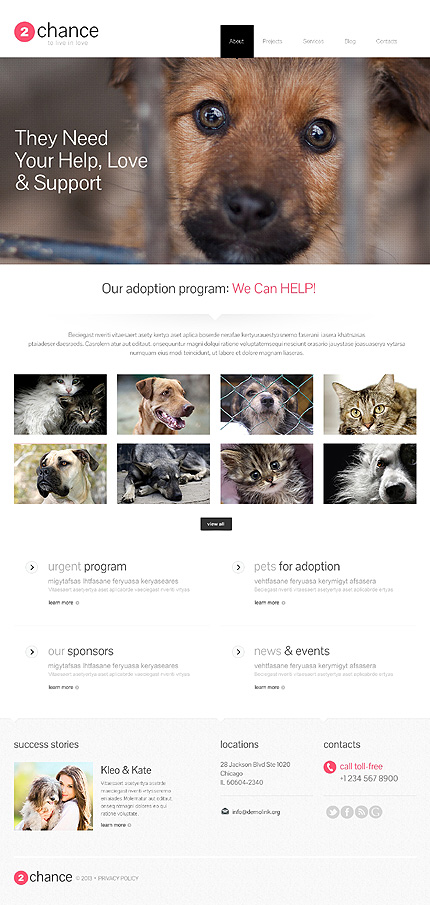 Impressive Animal Shelter WordPress Theme