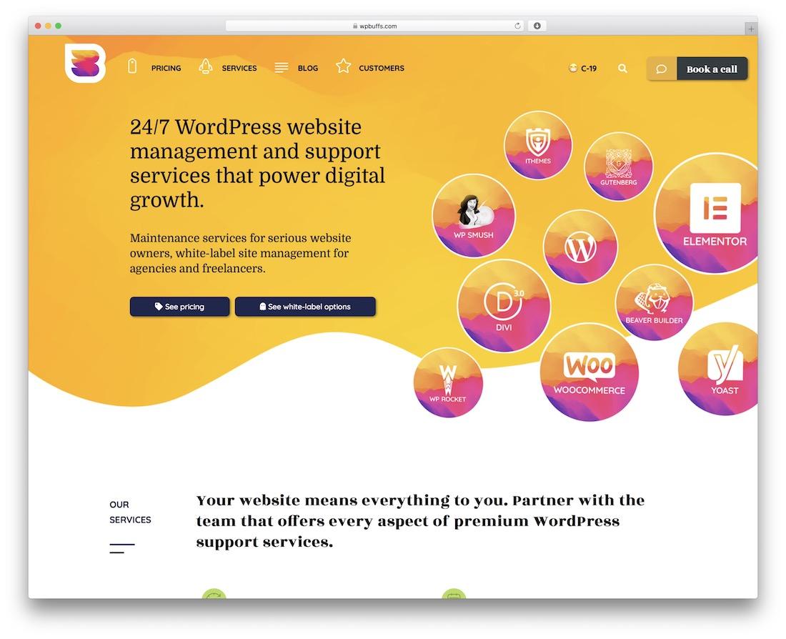 wp buffs wordpress maintenance service