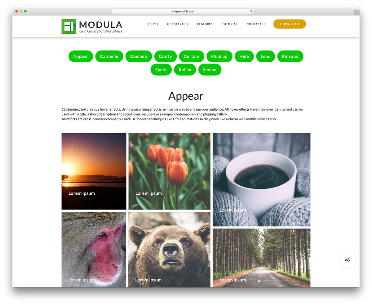 Top 28 Best Plugins for WordPress Photoblogs 2019 - Colorlib