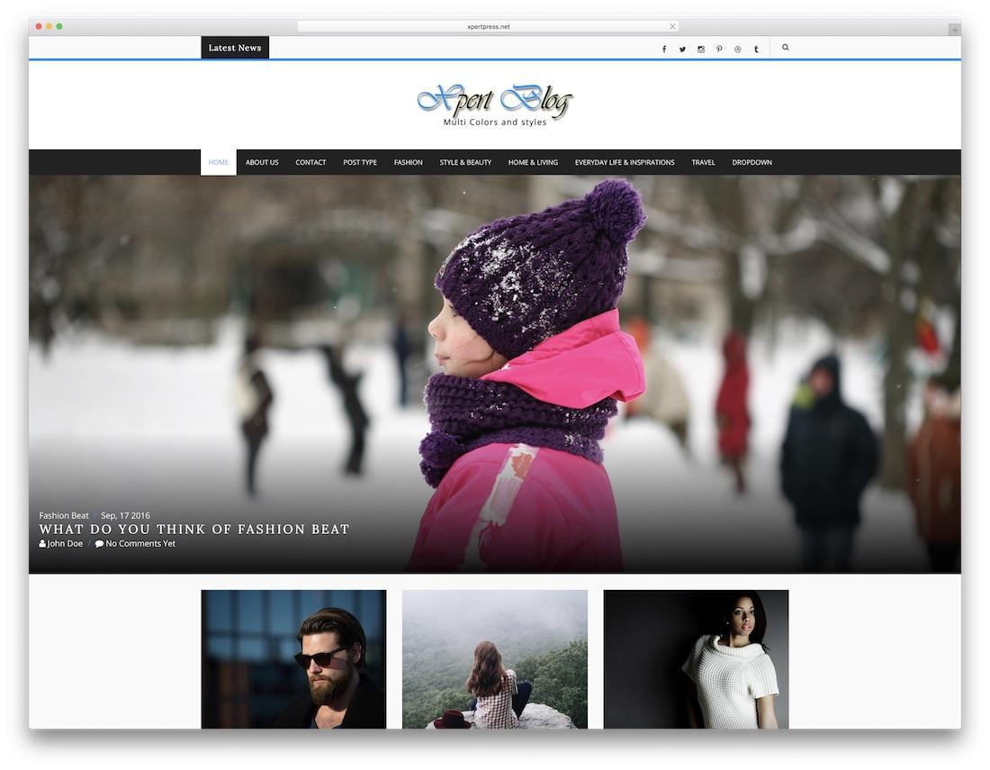 xpert blog cheap website template