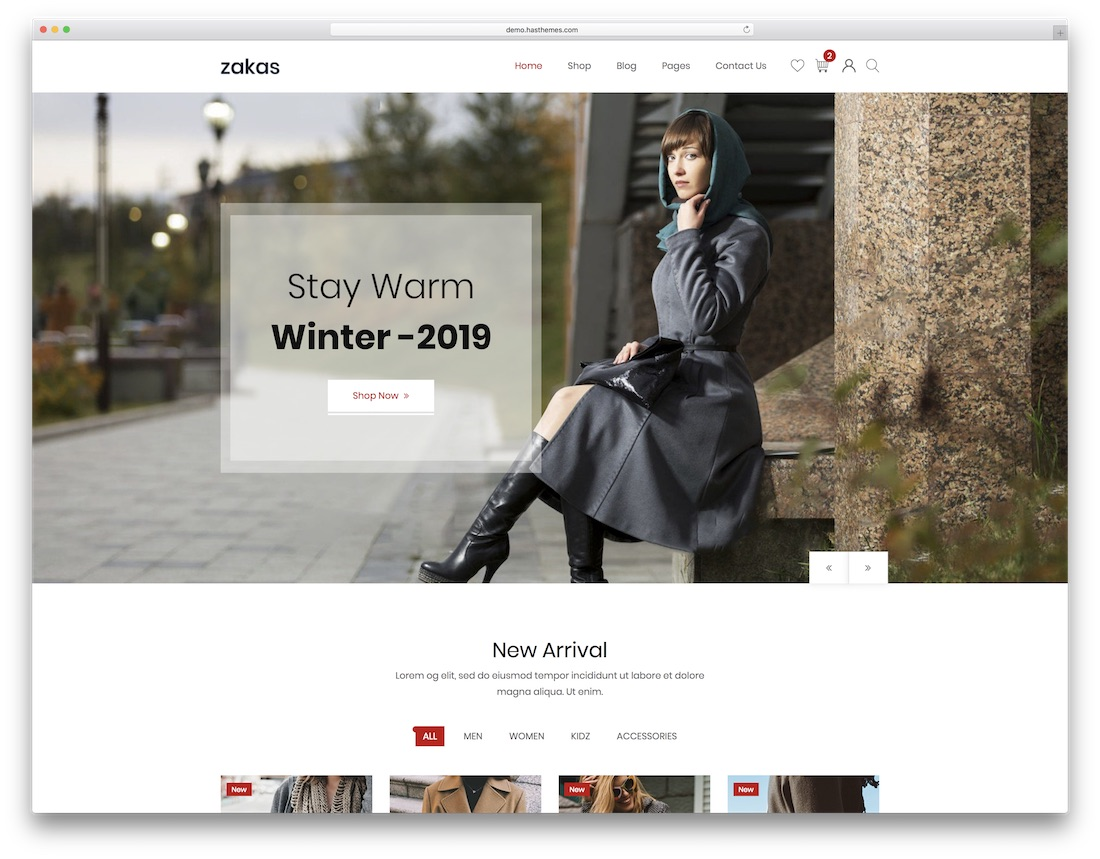 zakas fashion website template