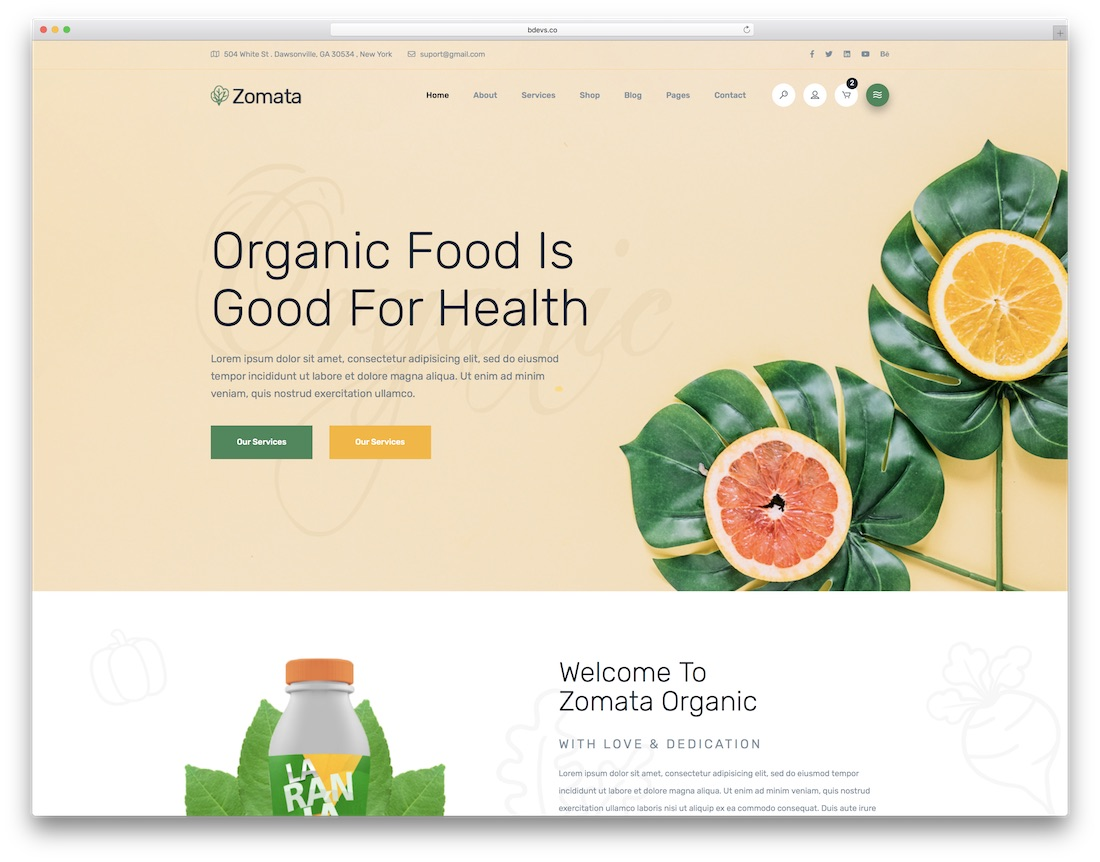 zomata food website template